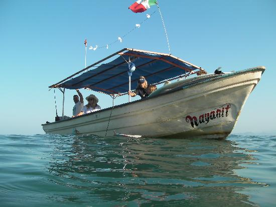 Sayulita Surf Day Camps : boat trips