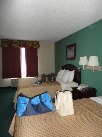 Best Western Galleria Inn & Suites: Beds