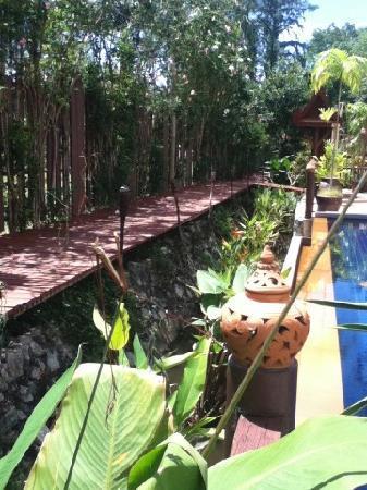 Seapines Villa Liberg: Lovely cared for gardens.