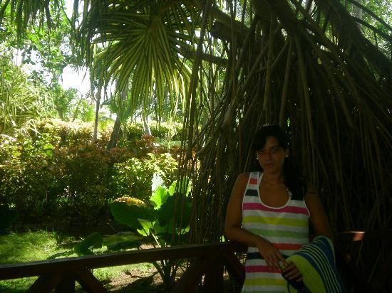 Natura Park Beach Eco Resort & Spa: la vegetacion me encantó!!!