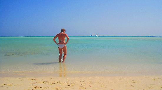 The Grand Resort Hurghada: Desert Island on Snorkling day