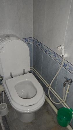Hotel d'Hydra: Toilette