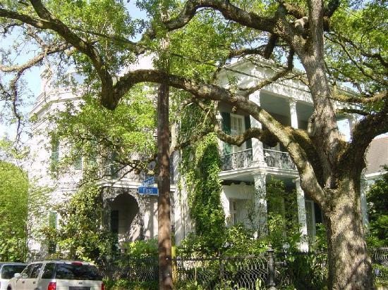 Garden District Picture of Garden District New Orleans