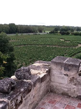 Demeure de la Vignole: VUE
