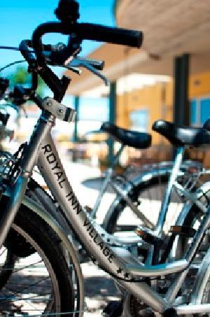 San Mauro a Mare, Italia: Biciclette a disposizione