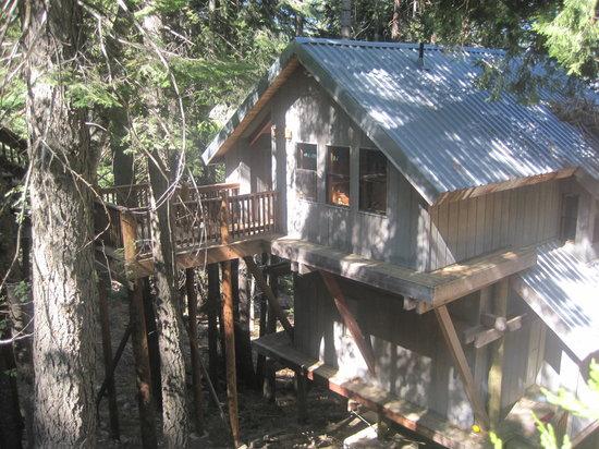 Yosemites Four Seasons