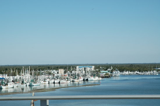 Matanzas on the Bay: Fishing Fleet