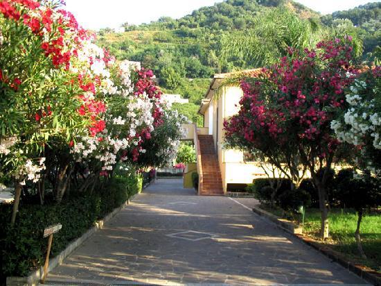Piraino, Włochy: Viali