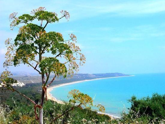 Villa Sogno Charme e Relax Selinunte: riserva fiume platani
