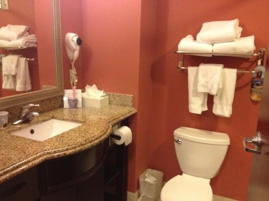 Holiday Inn Express Hotel & Suites Orlando South-Davenport: regular bathroom