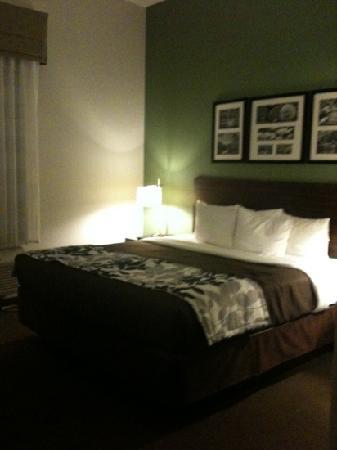 Sleep Inn & Suites Downtown Inner Harbor: Room (a bit blurry)