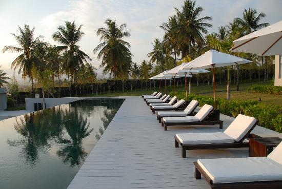 The Lombok Lodge: The pool