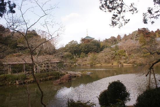 成田市 Picture
