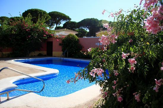 Hotel Pinomar : charming backyard