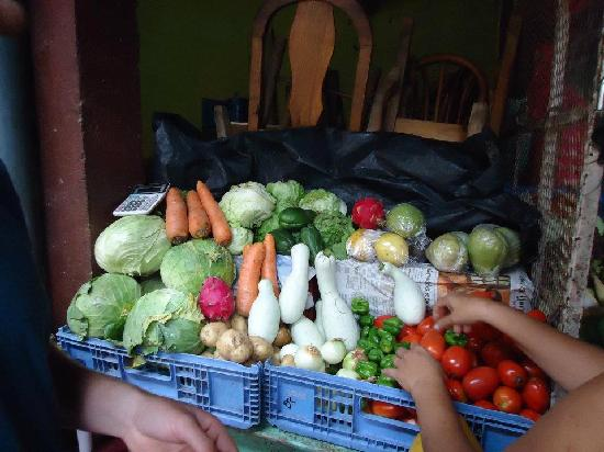 Rancho Cecilia Nicaragua: The market they helped us visit