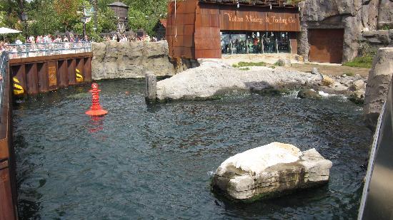 Erlebnis Zoo Hannover: Yukon Bay