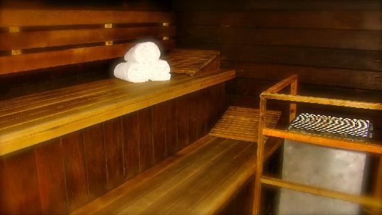 Best Western Adirondack Inn: Sauna