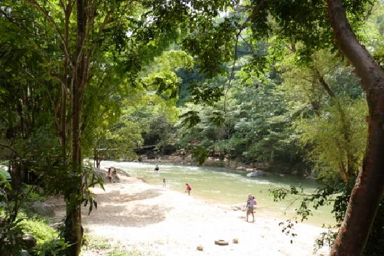 Buganvilias Vacation Club: Jungle tour stop