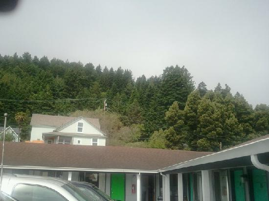 Humboldt Gables Motel: The hill right behinde the hotel, marine layer.