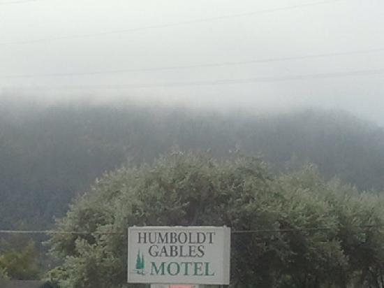 Humboldt Gables Motel: Looking out across the parking lot