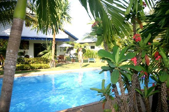 Phuket Lotus Lodge: Swimmingpool