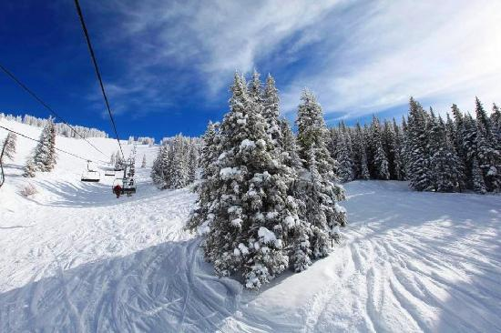 Vail Run Resort: Ski Vail