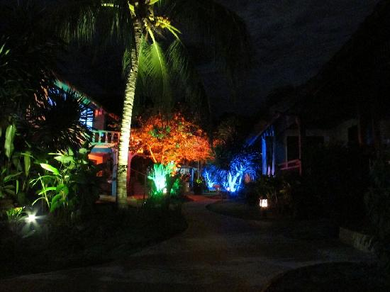 Blue Ribbon Dive Resort: Our Garden at night