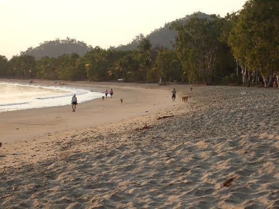 Kewarra Beach Resort Reviews