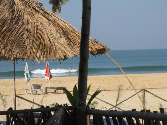 Bamboo House Goa: Beach