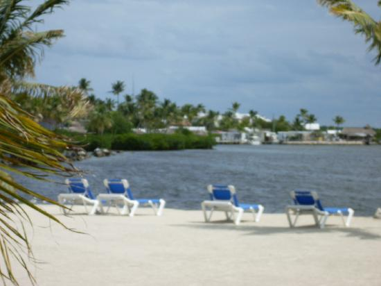 Coconut Cove Resort and Marina: Anlage