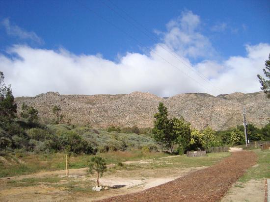 Langdam-in-Koo Guest Farm: Campsite