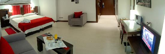 Hotel Ciutat de Girona: Superior Room