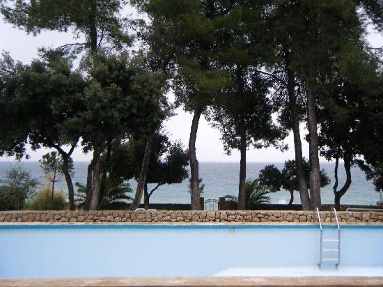Swimming Pool in the Villa Nela Garden