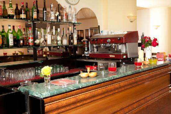 Hotel Gambrinus: Bar
