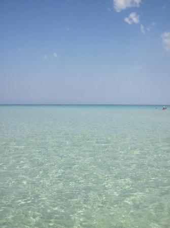 Palais des Iles Djerba Resort : Escursione all'Isola Rosa