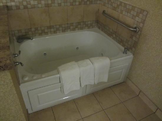 Hampton Inn & Suites Toledo-Perrysburg: Whirlpool