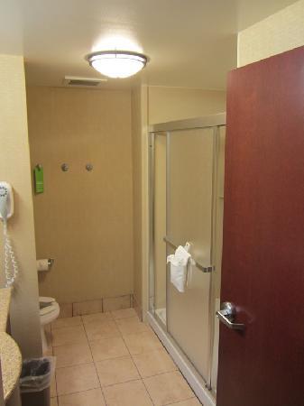 Hampton Inn & Suites Toledo-Perrysburg: Badezimmer
