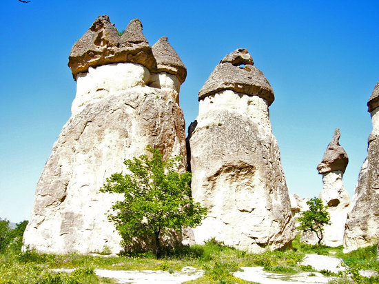Goreme Ranch: Just another couple of rocks