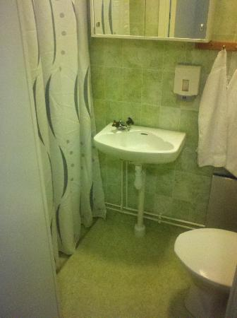 Hotell Bjorkhaga : bathroom/shower