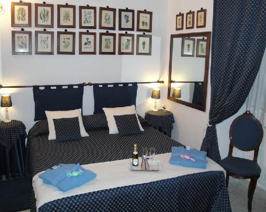 A Casa di Serena a San Pietro: Blue room