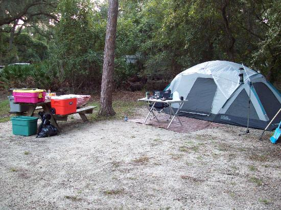 Lake Kissimmee State Park: Spacious camp lot