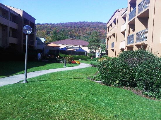 Courtyard Mahwah: great views from the courtyard