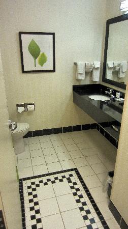 Fairfield Inn & Suites Twentynine Palms-Joshua Tree National Park: Stylish bathroom