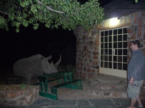 Mokolodi Restaurant: face to face with the rhino