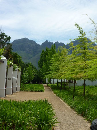 Lourensford Wine Estate: Garden view