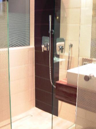 Hotel Vienna: Dusche mit 2 verschiedenen Systemen