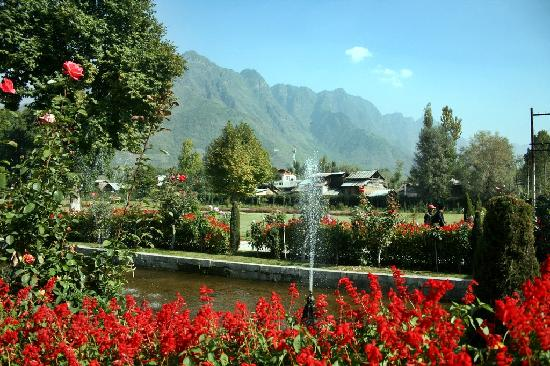 Shalimar Bagh Srinagar Picture Of Shalimar Bagh