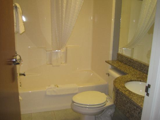 Microtel Inn & Suites by Wyndham Bath: Bathroom