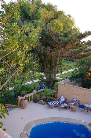 Villa Quieta: Il giardino e piscina