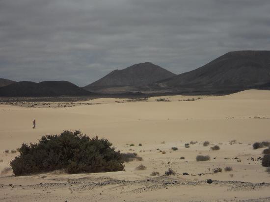 Natoural Adventure: le dune
